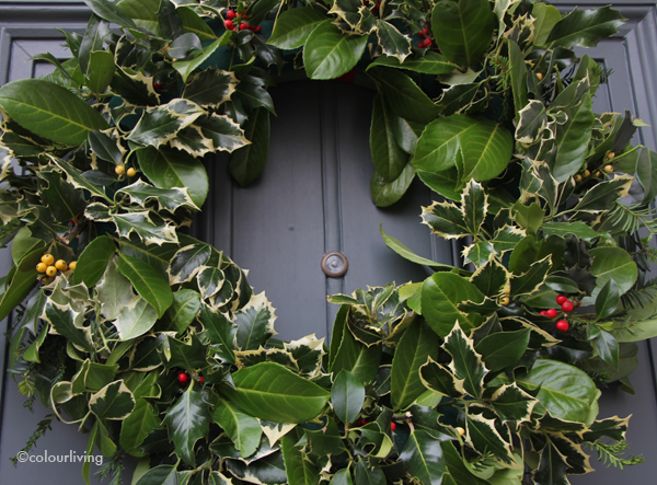wreath holly