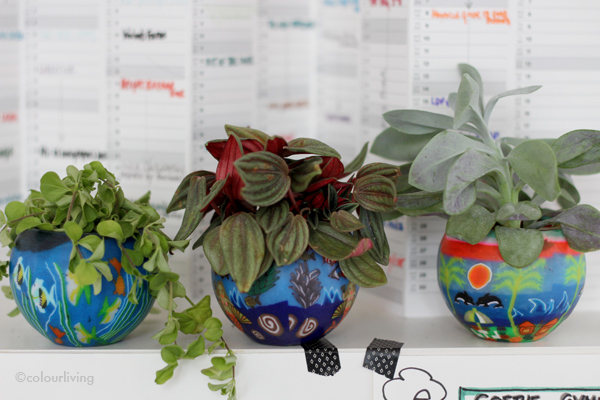 Urban Jungle Bloggers - plants in the workplace
