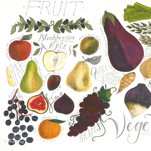 food illustrations by esther cooper-wood - colourliving