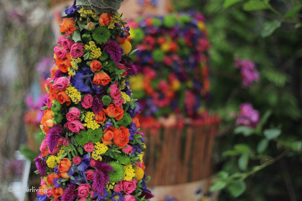 rhs chelsea flower show - colourliving