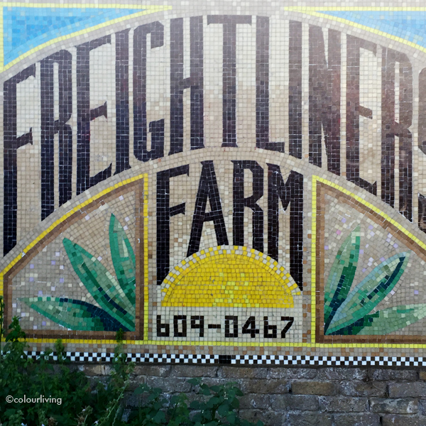 freightliners farm - colourliving