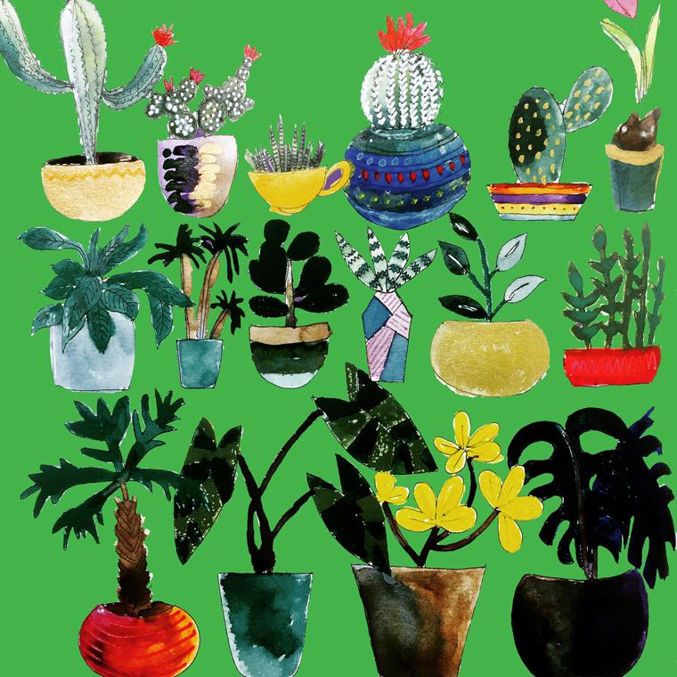 plants 760